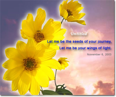 wingsoflight